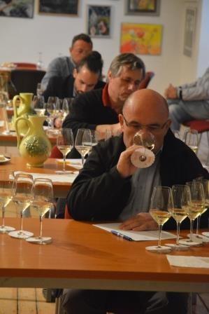 Označení VOC Znojmo má 40 nových vín. Poprvé je ochutnají návštěvníci festivalu