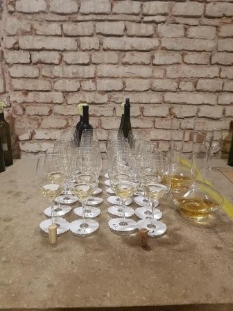 Ochutnejte poklad mezi znojemskými víny: královský Ryzlink rýnský