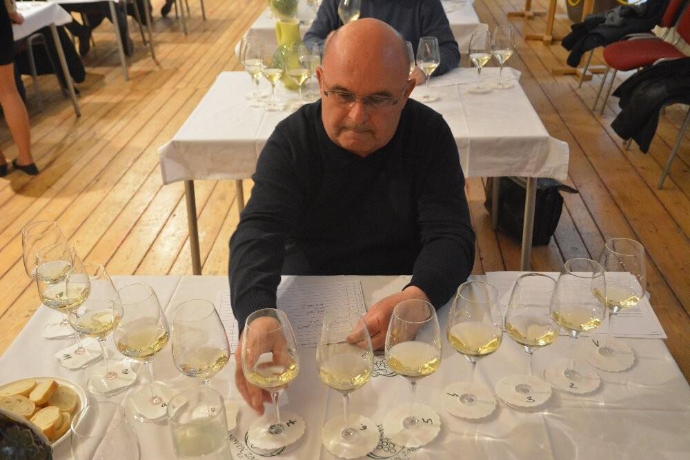 Vinaři VOC Znojmo budou zatřiďovat další vína