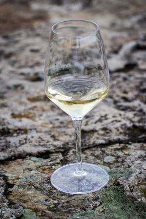 Praho, těš se! Na festival znojemských vín v Praze