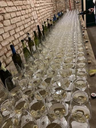 Netradiční zatřiďování vín přineslo do rodiny VOC Znojmo 32 nových vín
