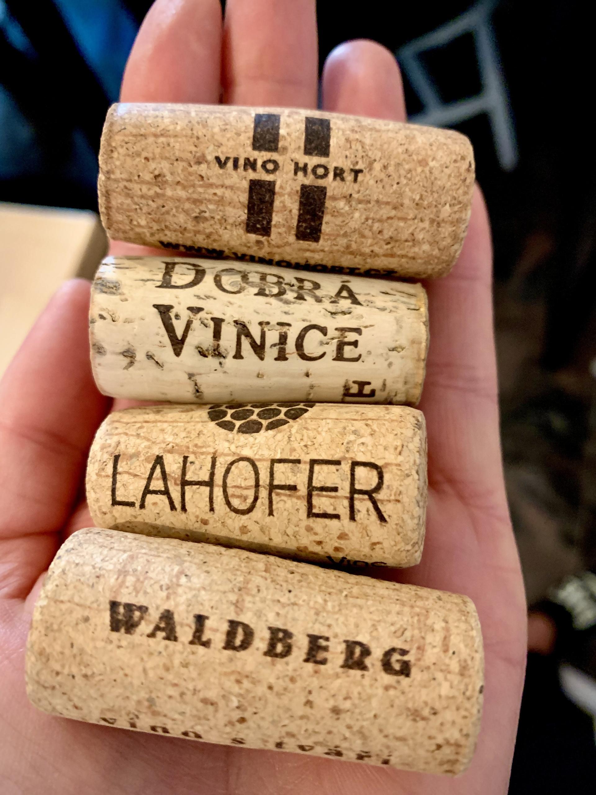Královská řada vín ze Znojma míří na trh